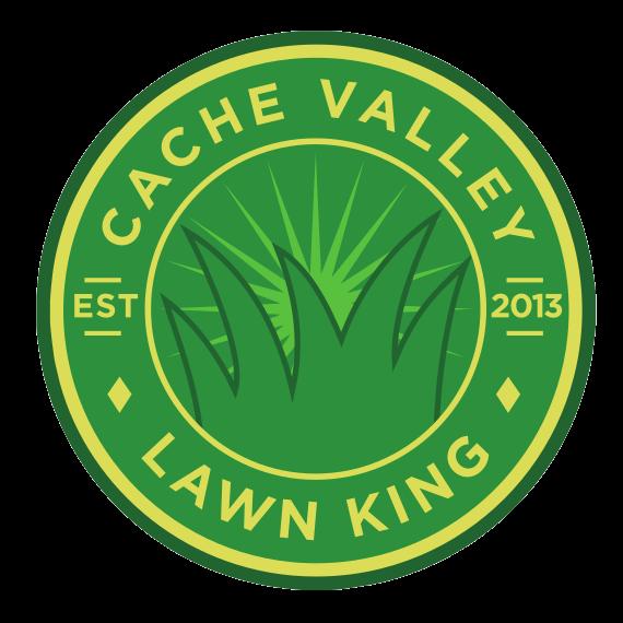 CV Lawn King