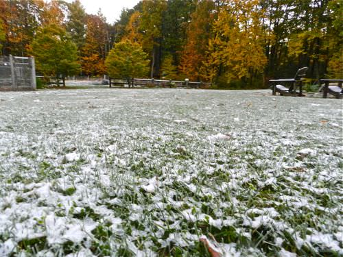 3 Lawn Care Tips For Winter