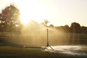 best watering practices
