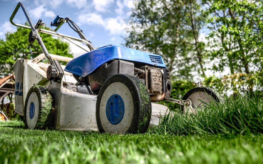 rental property lawn care